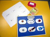 Juego completo: tablero de seis huecos, lámina y cajita con los objetos.