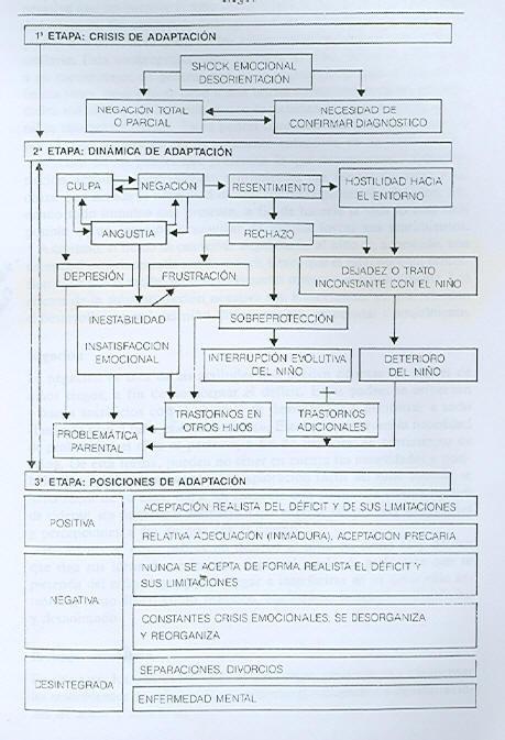 Figura - Etapas evolutivas de adaptação que seguem os pais de crianças deficientes visuais  -  Fonte: Leonhardt (1992)