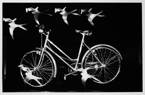 A Dream of Motion - fotografia de Evgen Bavcar - 1997