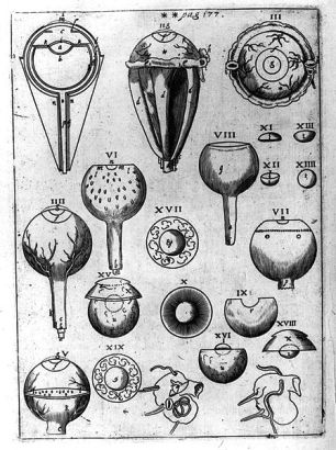 "A plate from Johannes Kepler's ""Ad Vitellionem Paralipomena..."" (1604) illustrating the structure of eyes"