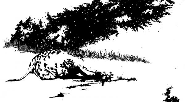 El Reino de los Ciegos 3 - Verena Urrutia, 2009 [tinta da china, acrílico e lápis]