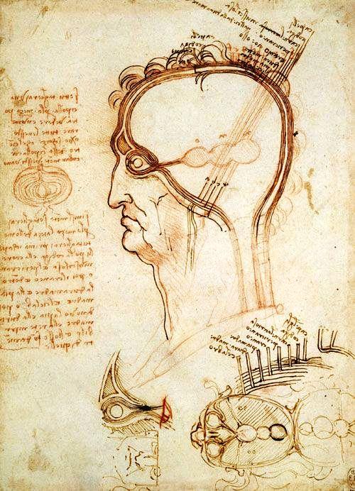 Mecanismo da Visão - Leonardo da Vinci, desenho 1492