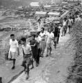Refugiados chineses pro-Kuomingtang cegos em Tiu-keng-leng, c.1950